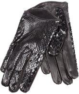 Imoni snakeskin print gloves