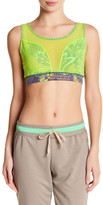 Maaji Mosel Valley Sports Bra