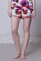 Anthropologie Isaphan Shorts