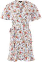 Topshop Confetti Tea Dress