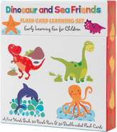 Dinosaur And Friends Flash Card Learning Set