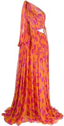Maria Lucia Hohan Matilda printed one-shoulder gown