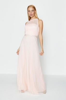 Coast Mesh Pleat Maxi Dress