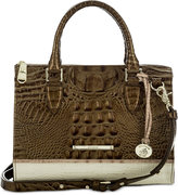 Brahmin Primrose Anywhere Convertible Satchel, A Macy's Exclusive Style