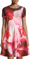 Julia Jordan Floral-Print Short-Sleeve Fit & Flare Dress, Red/Multi