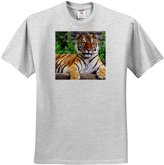 3dRose LLC Tigers - Siberian Tiger - T-Shirts - Youth Birch-Gray-T-Shirt Med(10-12)