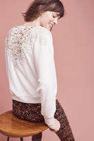 Meadow Rue Bria Lace-Back Sweatshirt