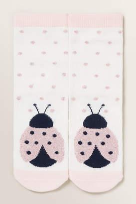 Seed Heritage Ladybug Socks