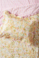Lulie Wallace Pleasing Poppies Toddler Sham