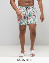 Asos PLUS Swim Shorts In Pink Tropical Floral With Triangle Print In Mid Length
