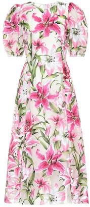 Dolce & Gabbana Floral silk and organza midi dress