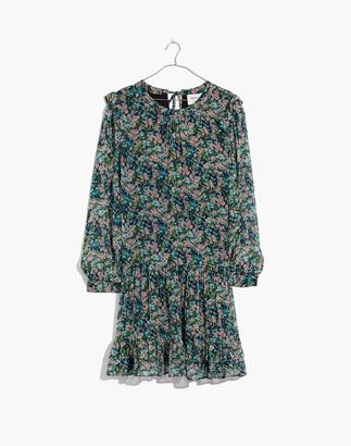Madewell Cecilie Copenhagen Carliane Ruffle Dress