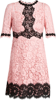 Dolce & Gabbana Cordonetto-lace dress