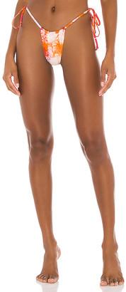 Frankie's Bikinis Tasha Bikini Bottom