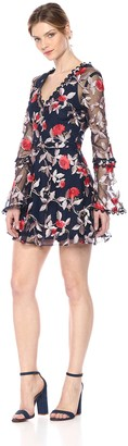 Finders Keepers findersKEEPERS Women's Rituals Vneck Embroidered Mini Flare Dress Sheer Long Sleeve