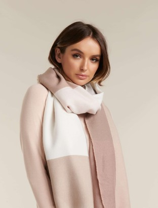 Ever New Michelle Colour Block Scarf