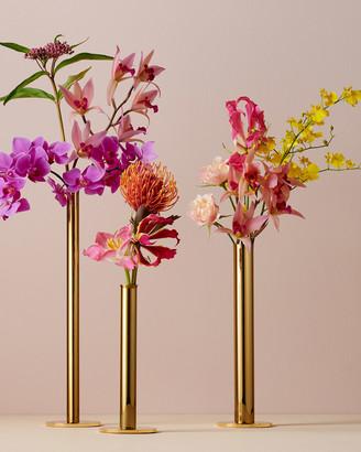 AERIN Lilio Bud Vases Set of 3