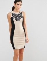 Laced In Love Panel Bodycon Dress