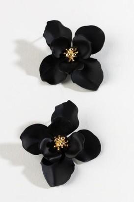 francesca's Amelia Floral Stud in Black - Black