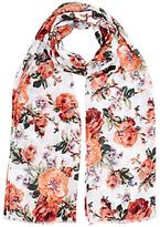 Oasis Floral Bloom Print Scarf, Multi