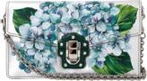 Dolce & Gabbana Metallic Hand Painted Bag