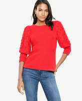 Ann Taylor Petite Crewneck Cable Sleeve Sweater