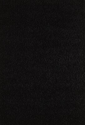 "Wildon Home Pera Black Area Rug Rug Size: Rectangle 4' x 5'8"""