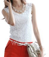 LQH Women's Summer Lace V-neck Sleeveless Blouse Casual Tops WF-TW001 (M, )