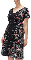 Adrianna Papell Floral Printed Crepe Scuba Plus Dress, Black/Multi