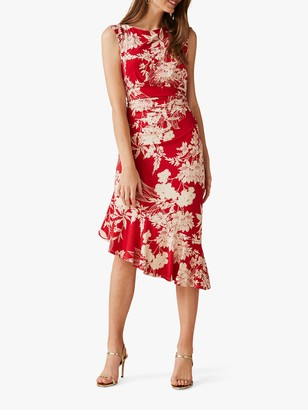 Phase Eight Raelynn Floral Print Dress, Carmine