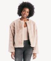 Sanctuary Women's Starry Night Faux Fur Jacket In Color: Stone Size XS From Sole Society