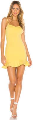 Privacy Please Oakwood Mini Dress
