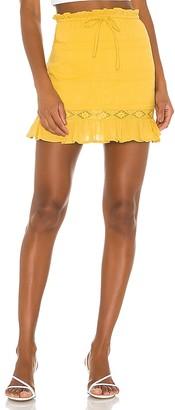 Privacy Please Liliane Mini Skirt