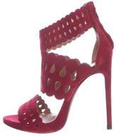 Alaia Suede Lasercut Sandals