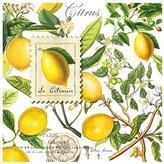 Michel Design Works 20-Count 3-Ply Paper Luncheon Napkins, Lemon Basil