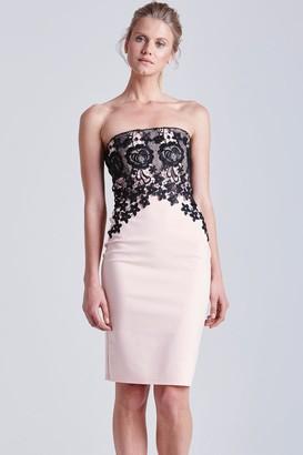 Little Mistress Blush and Black Lace Bandeau Dress