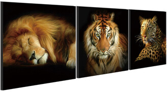 Chic Home Design Wild Safari 3Pc Set Wrapped Canvas Wall Art