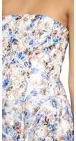 Alice + Olivia Dreema Strapless Ball Gown