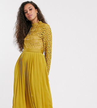 Little Mistress Petite midi length long sleeve lace dress in mustard-Yellow
