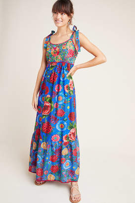 Payal Jain Cirque Embroidered Maxi Dress