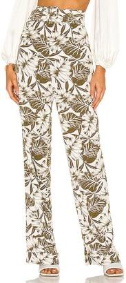 Bronx and Banco Palm Pants