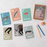 James Barker Animal Alphabet Flash Cards