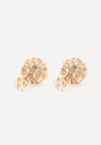 Bebe Stud & Sphere Earrings