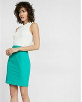 Express High Waisted Pintucked Pencil Skirt
