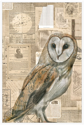 Jonathan Bass Studio Academic Owl Illustration, Decorative Framed Hand