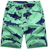 missfiona Men¡ ̄s Swim Trunks Summer Boardshorts Shark Printed Quick Dry Beach Shorts(L, )
