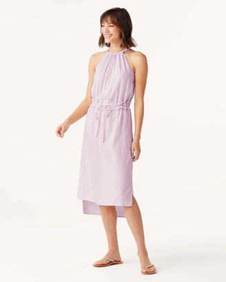 Splendid Falmouth Dress