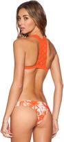 Mikoh Tuamotu Woven Racerback Bikini Top
