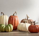Pottery Barn Faux Pumpkins