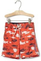 Fish pull-on swim trunks